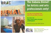 Travel to the Havana Bienal