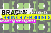 8th Annual BRONX RIVER SOUNDS: Resonating across Genres