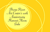 20th Anniversary Gala at the Bronx Museum